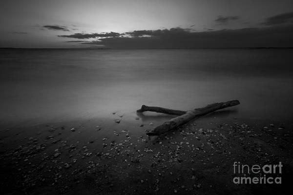 Drift Photograph - Drift Wood Sunset Bw by Michael Ver Sprill