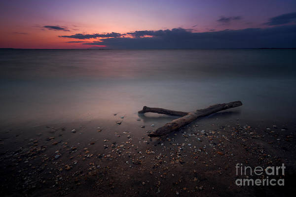 Drift Photograph - Drift Wood Sunset by Michael Ver Sprill