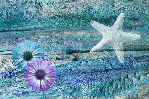 Photograph - Sea Star Drifting by Gill Billington