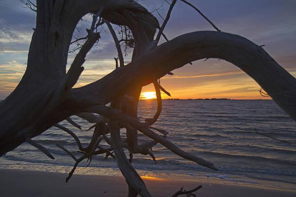 Jekyll Island Photograph - Drifting Thoughts by Betsy Knapp