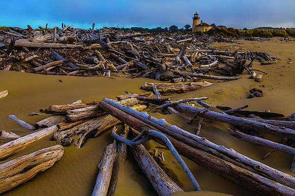 Wall Art - Photograph - Driftwood And Coquille River Lighthouse, by Garry Gay