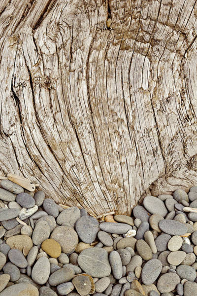 Pebble Digital Art - Driftwood And Rock Abstract Vertical by Peter J Sucy