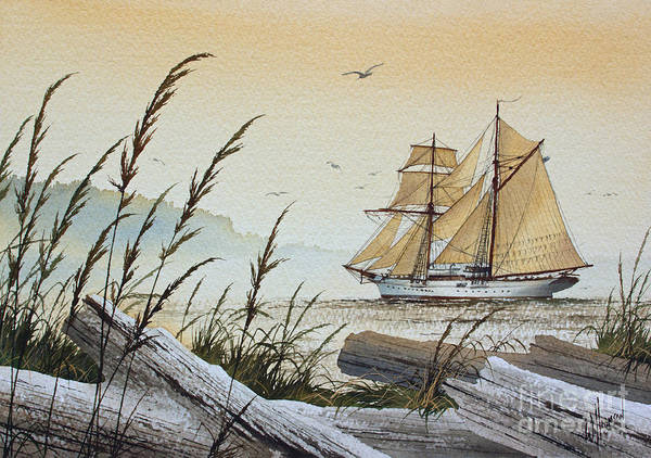 Vessel Painting - Driftwood Bay by James Williamson
