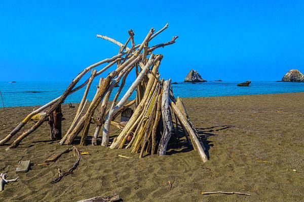 Lean-tos Photograph - Driftwood Beach Art by Garry Gay