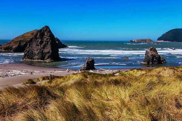 Oregon Dunes Photograph - Driftwood Beach by Garry Gay