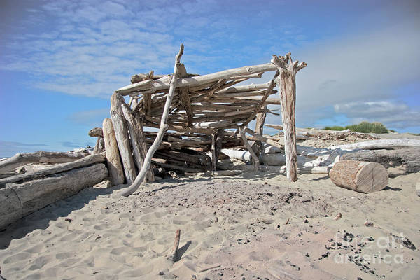 Lean-tos Photograph - Driftwood Castle by John Stephens