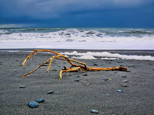 Photograph - Driftwood - Okarita Beach - New Zealand by Steven Ralser