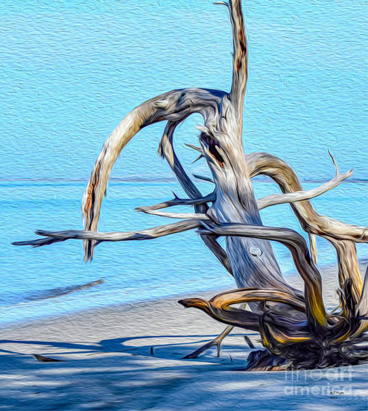 Jekyll Island Painting - Driftwood On Jekyll by Bill And Deb Hayes