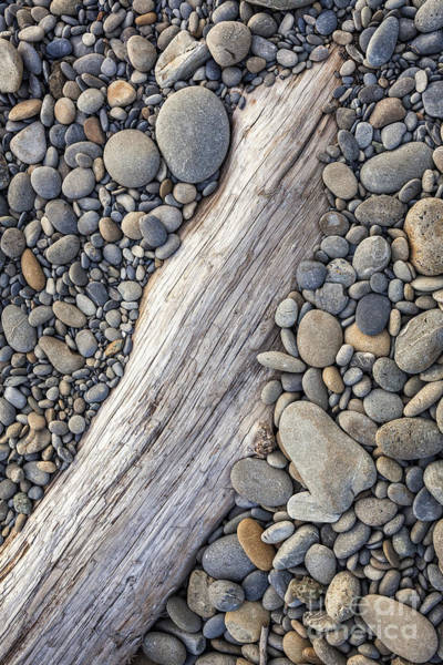 Photograph - Driftwood On Rock Covered Beach by Bryan Mullennix
