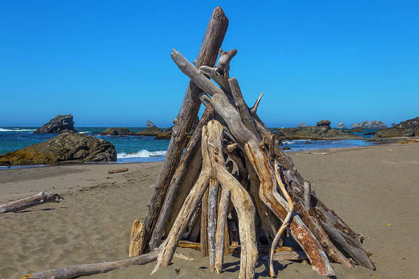 Driftwood Photograph - Driftwood Teepee Oregon Coast by Garry Gay