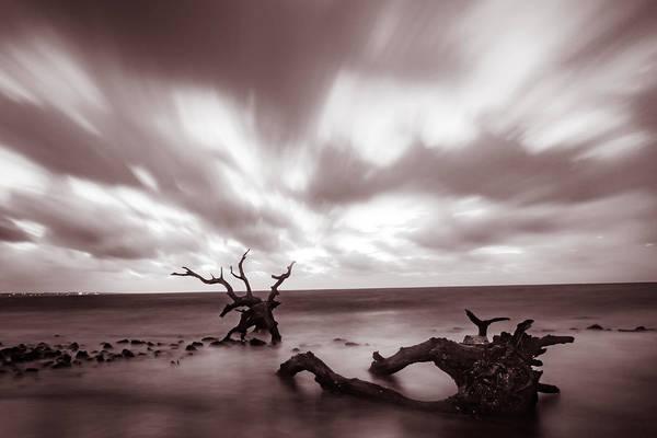 Photograph - Driftwood Velvet Dawn by Chris Bordeleau