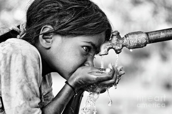 India Photograph - Drinking Water by Tim Gainey