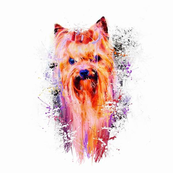 Mixed Media - Drippy Jazzy Yorkshire Terrier Colorful Dog Art By Jai Johnson by Jai Johnson