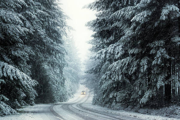 Wall Art - Photograph - Driving Home For Christmas by Martin Podt