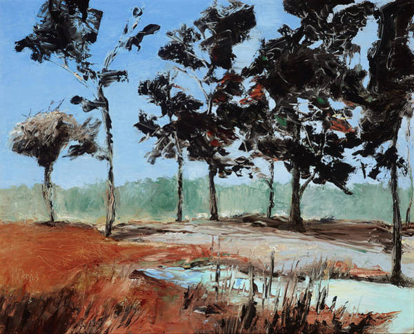 Painting - Dark Trees And A Stream by Nan Davis
