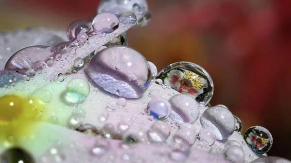 Wall Art - Photograph - Drops Of Light by Gary Yost