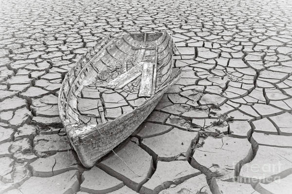 Photograph - Drought by Pd