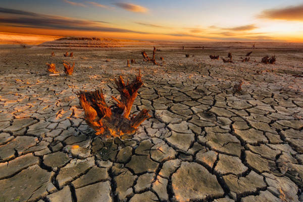 Dry Photograph - Dry Lake by Piotr Krol (bax)