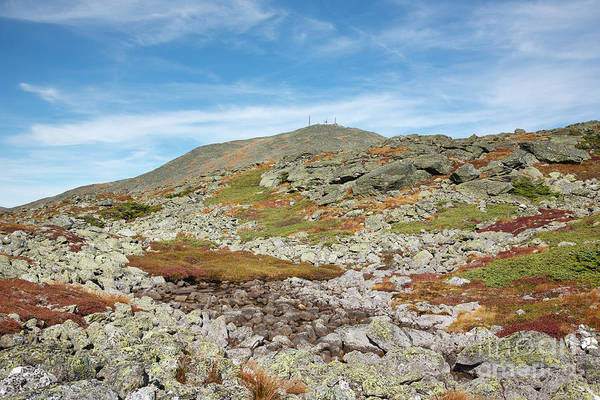 Photograph - Dry River Trail - Mt Washington New Hampshire by Erin Paul Donovan