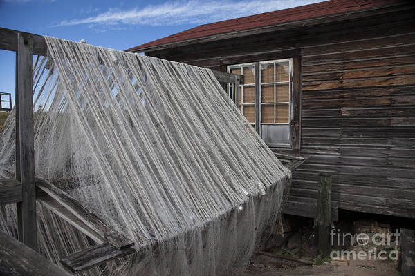 Wall Art - Photograph - Drying The Nets by Timothy Johnson
