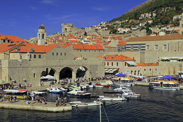 Photograph - Dubrovnik Old Town Port by Tony Murtagh