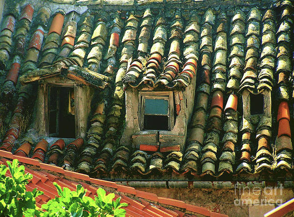 Photograph - Dubrovnik Roof Tiles by Mary Kobet
