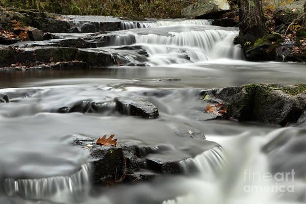 Photograph - Duck Brook by Karin Pinkham