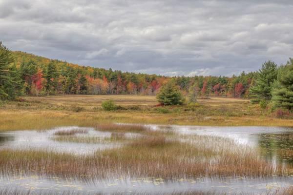 Photograph - Duck Brook Road by Paul Schultz