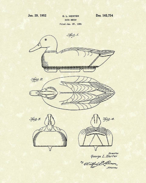 Drawing - Duck Decoy 1952 Patent Art by Prior Art Design