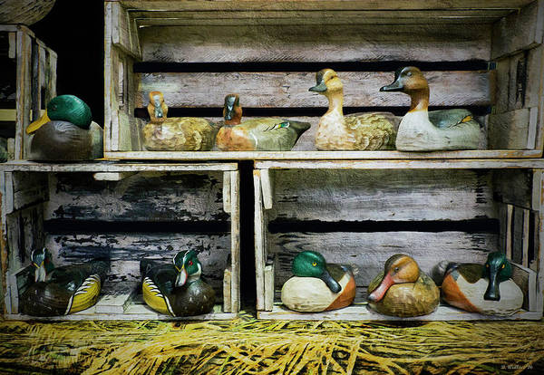 Wall Art - Photograph - Duck Decoy Display by Brian Wallace