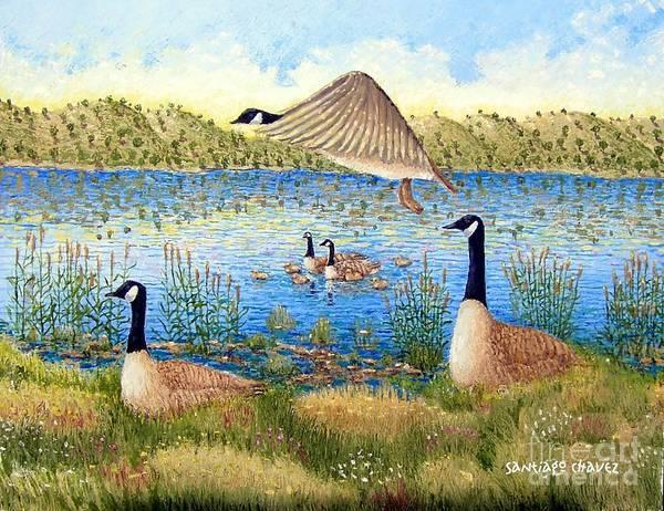 Painting - Duck Goose   Duck by Santiago Chavez