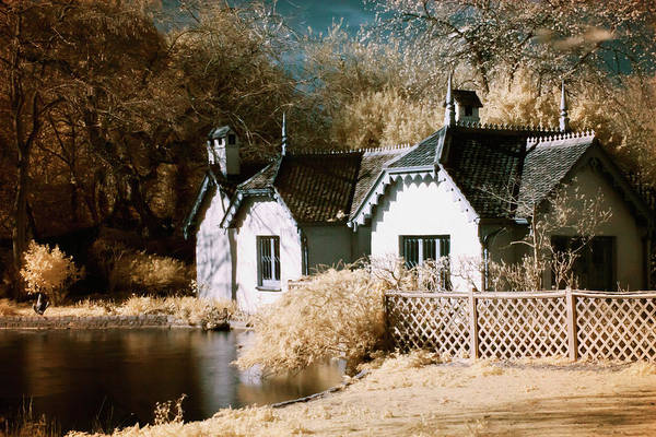 Photograph - Duck Island Cottage by Helga Novelli