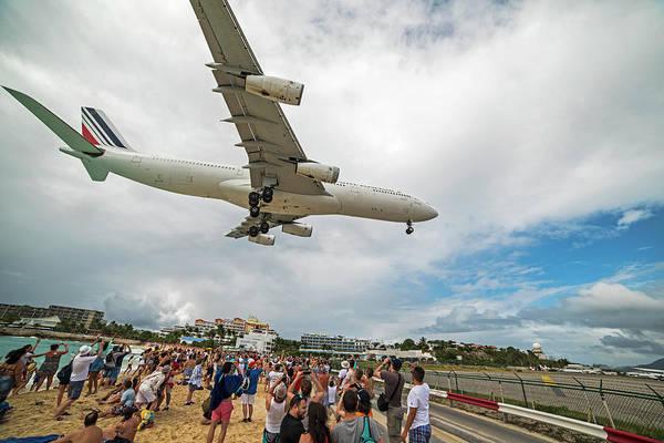 Photograph - Duck... Landing Over Sunset Beach Saint Martin Caribbean by Toby McGuire
