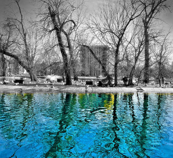 Digital Art - Duck Pond by Susan Kinney