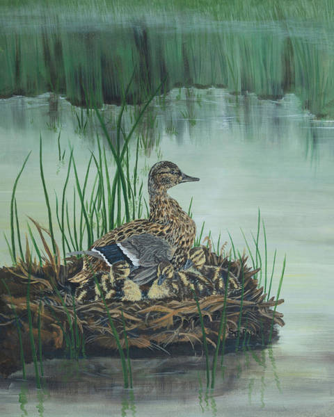 Painting - Ducks In Lifting Fog by Sheri Jo Posselt