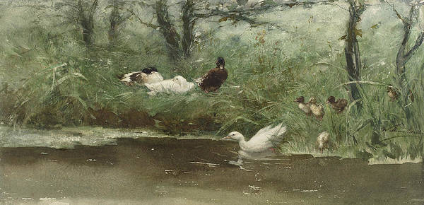 Ditch Painting - Ducks In The Ditch by Willem Maris
