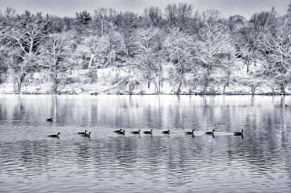 Photograph - Ducks In Winter On The Schuylkill River by Bill Cannon