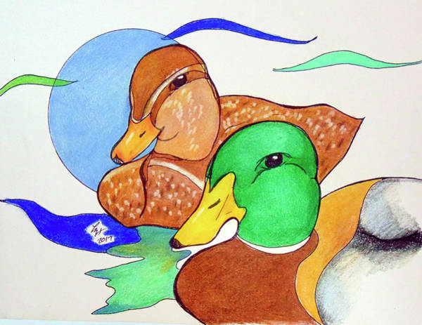 Drawing - Ducks2017 by Loretta Nash