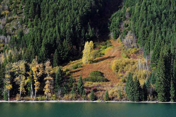 Photograph - Duffey Lake Colors by Pierre Leclerc Photography