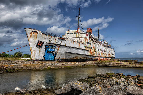 Swan Photograph - Duke Of Lancaster  by Adrian Evans