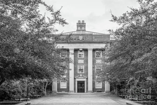 Photograph - Duke University Biological Sciences by University Icons