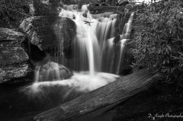 Photograph - Dukes Creek Falls 4 by Dillon Kalkhurst