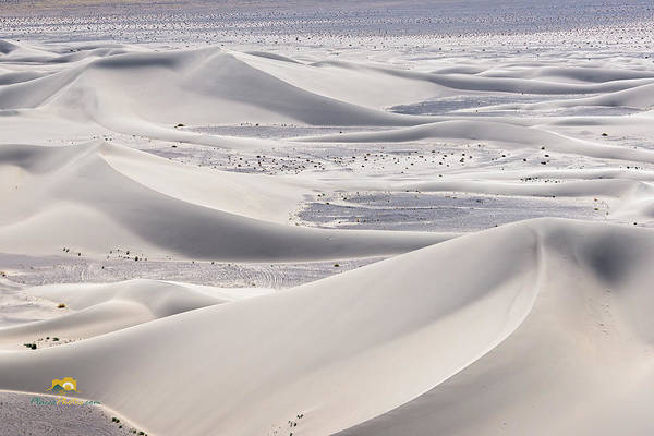 Photograph - Dumont Dunes 17 by Jim Thompson