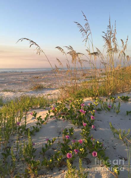 Photograph - Dune Bliss by LeeAnn Kendall