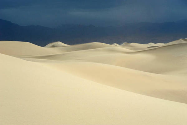 Wall Art - Photograph - Dune by Catherine Lau