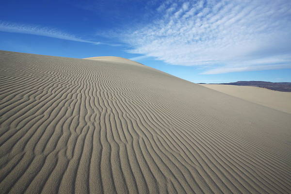 Photograph - Dune by David Andersen