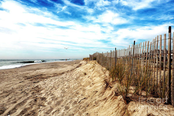 Photograph - Dune Fence In Cape May by John Rizzuto