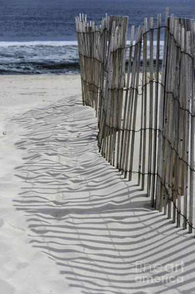Photograph - Dune Fence Shadows by Debra Fedchin
