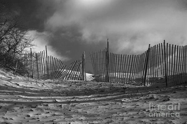 Wall Art - Photograph - Dune Fence by Timothy Johnson