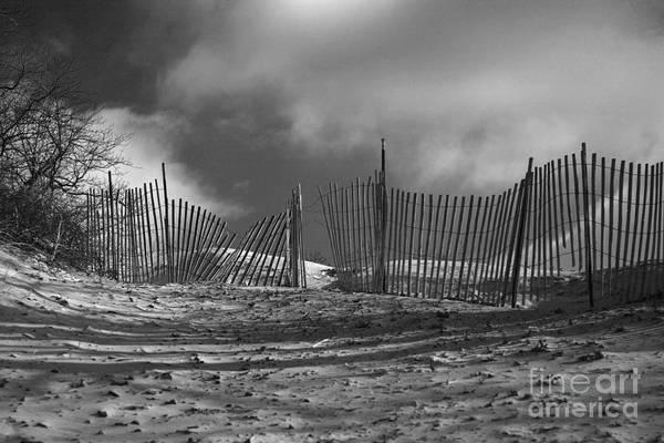 Dune Fence Art Print